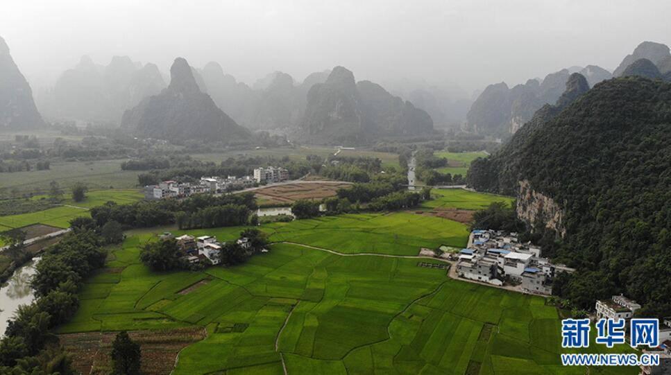 图为位于广西壮族自治区大新县堪圩乡明仕村的明仕田园风景.