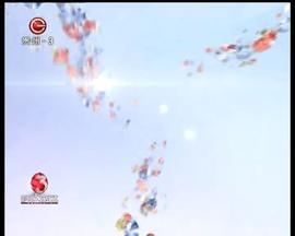 4分钟《铁血荣耀》精彩片段