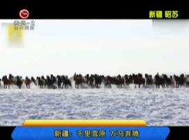 新疆:千里雪原 万马奔腾