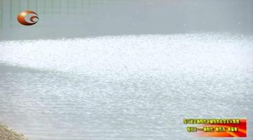 凯松水库输水工程顺利实现临时通水