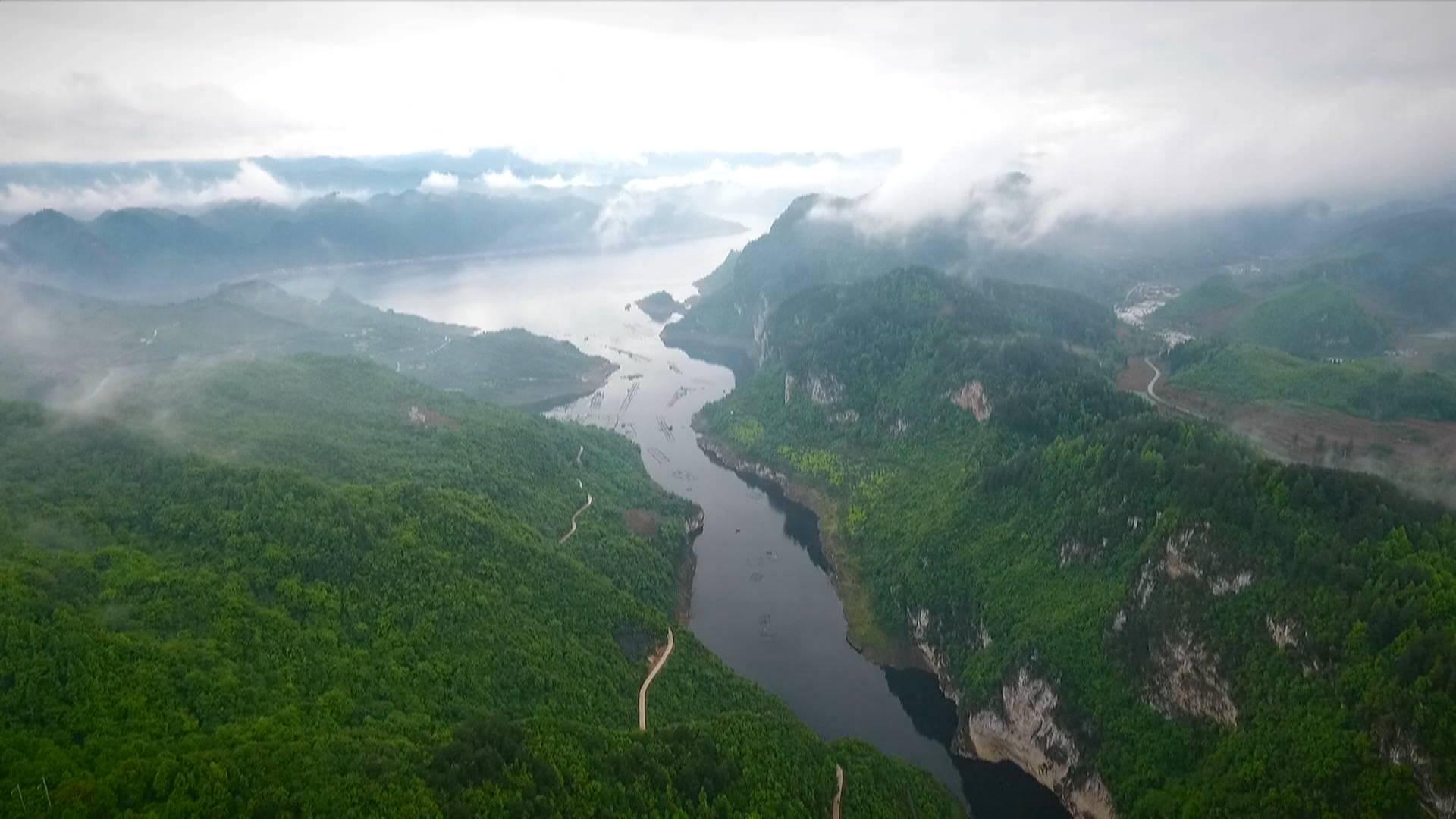 贵州生态日:让生态保护为发展注入强劲动力