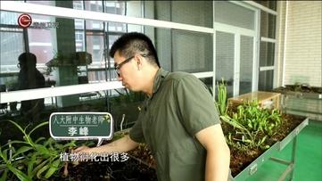 中国梦主题纪录片之有意思的课堂第四集跨界生物