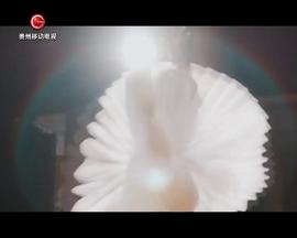 频道宣传片