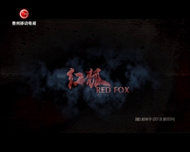 红狐002