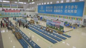 贵州新闻联播丨贵州针·茶交易平台复市3个月 销售额超2亿元