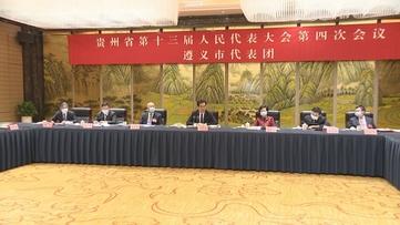 李炳军参加遵义代表团审议时强调 坚持按市场规律办事提高发展质量和效益 全力推动贵州经济社会高质量发展