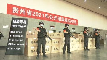 """贵州公开销毁一批毒品 禁毒""""大扫除""""专项行动成效显著"""