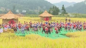贵州新闻联播丨中秋假期贵州实现旅游收入超55亿元 接待游客超1110万人次