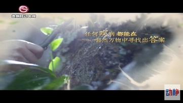 中医话养生10月22日