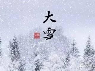 今日大雪|银装素裹满地白,万物冬藏待春来