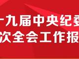 速览:中央纪委三次全会工作报告