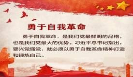 """关于""""自我革命""""  省委党校专家从9个方面为您解读"""