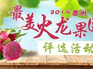 """2019贵州""""最美火龙果园""""评选活动开始啦!"""