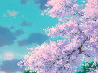 贵州花已开 人间很可爱——那些熟悉的美好,正在向我们走来